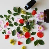Cosmétiques biologiques : soignez votre peau au naturel