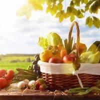 15 fruits et actifs végétaux utiles en cosmétique